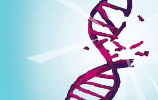 Повреждения ДНК. AstraZeneca